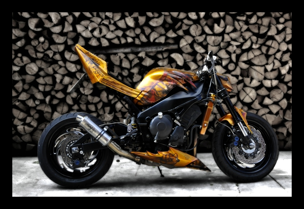 gallery custom motor fighters streetfighter custom bike. Black Bedroom Furniture Sets. Home Design Ideas